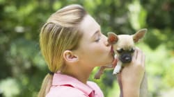 You Can Now Woo Future Landlords With Your Pet's