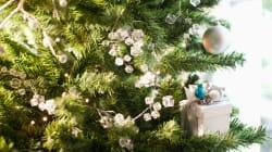 Comment choisir son sapin de Noël pour respecter