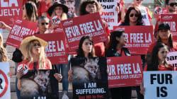 Los Angeles será la primera gran ciudad en prohibir las ventas de