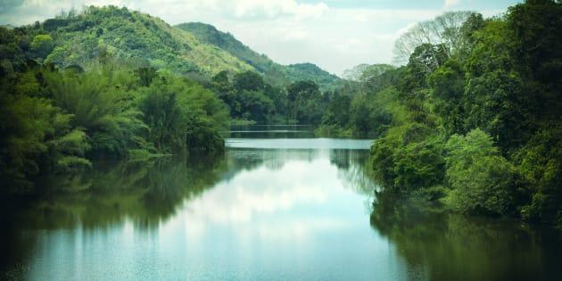 The Periyar River in Kerala, India.