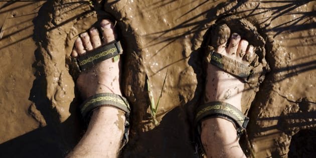 Melioidosis can get into your body from cuts on your feet.