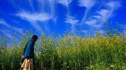 Indian Farmers Should Pay Tax, Says Economist Bibek