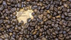 Las pérdidas por precios del café suman más de treinta mil millones de dólares por