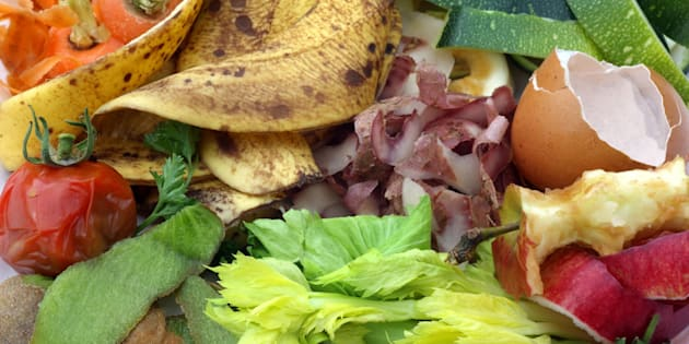 Close-up of organic fruit and vegetables food waste from kitchen for composting. The image includes carrot, potato peelings and apple peelings, apple core, banana skins, egg shell, rotten tomato, parsley, skin of kiwi fruit, celery leaves, marrow skin and strawberry tops.