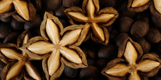 dried sacha inchi on roasted sacha inchi seeds background