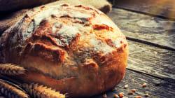 Questa ricerca riscatta (finalmente) il pane