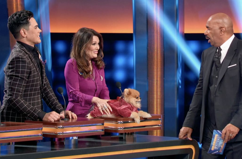 Celebrity Family Feud': Watch the 'Vanderpump Rules' cast