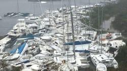 Caraibi devastati, l'apocalisse Irma terrorizza