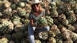 De cómo Oaxaca conquistó a una francesa con el sabor del