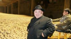 La foto di Kim Jong con quintali di patate sullo sfondo ha scatenato la creatività del