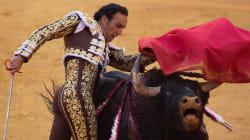 Le célèbre torero espagnol El Cid gravement blessé par un coup de corne de
