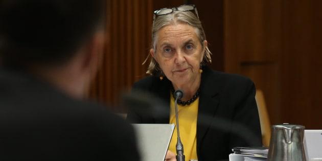 Greens Senator Lee Rhiannon wants to clamp down on lax MP entitlements.