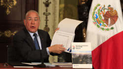 OCDE respalda el gasolinazo: Era inaplazable e