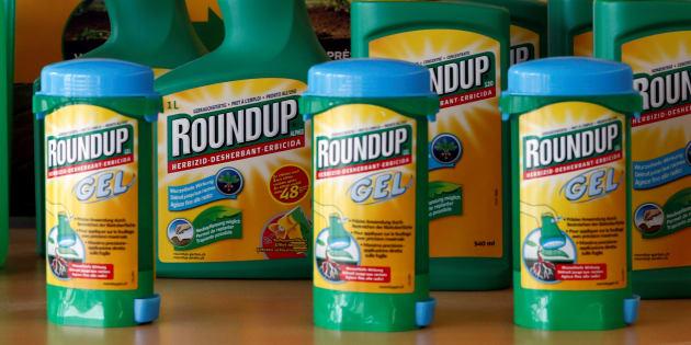 """Des produits """"Roundup"""" de Monsanto. REUTERS/Denis Balibouse/File Photo"""