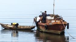Des dizaines de bateaux fantômes s'échouent sur les rives du