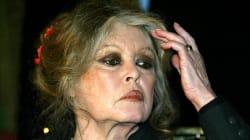 Brigitte Bardot fustige les actrices qui «font les allumeuses» pour un