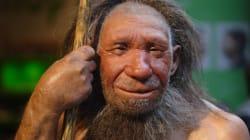 La pancetta l'abbiamo ereditata dall'uomo di Neanderthal (lo dice la