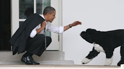 It's Time To Remember How Good Obama's Dogs
