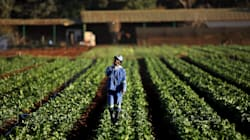 Expropriation Without Compensation: This Is The Legal
