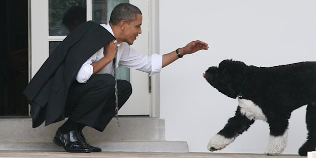 Barack Obama and Bo outside the Oval Office