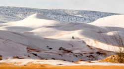 It Even Snowed In The Sahara