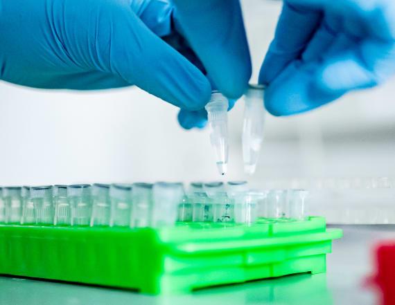 COVID-19 treatments enter new testing phase