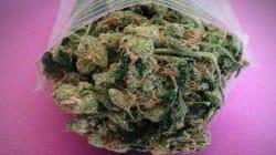Questa classifica mette la cannabis