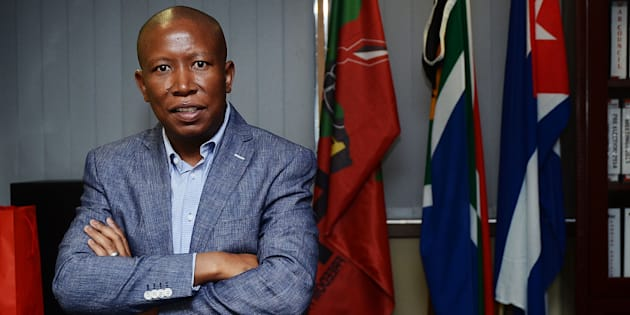 Julius Malema. Photo: Mduduzi Ndzingi/Sowetan/Gallo Images/Getty Images)