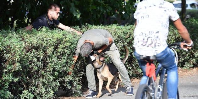 Violentata al Parco del Valentino a Torino, dopo una serata