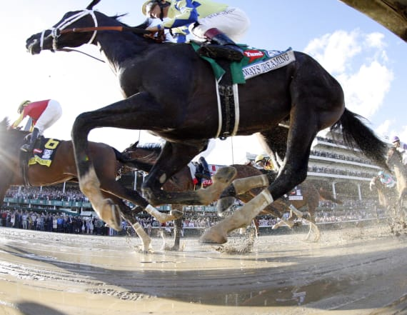 Repeat favorites emerge for Preakness Stakes