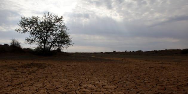 Si les émissions de gaz à effet de serre dépassent un certain seuil, le climat pourrait s'emballer à cause de la disparition des nuages.