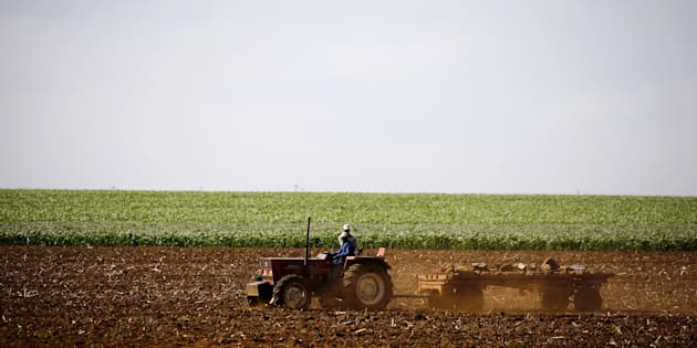 Farmers work on a land outside Lichtenburg, a maize-growing area in the North West province, South Africa November 26, 2015. REUTERS/Siphiwe Sibeko