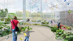 L'Insectarium de Montréal fait peau neuve: voici à quoi il
