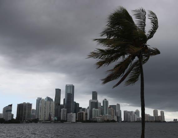 Isaias forecasted to regain hurricane strength