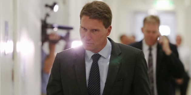 Bernardi says he does not support the author's 'other views'