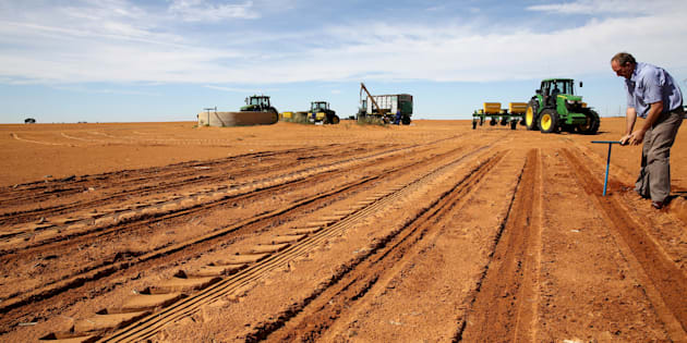 A farmer inspects the soil ahead of planting at a maize field in Wesselsbron, a small maize farming town in the Free State province of South Africa, January 13, 2016.