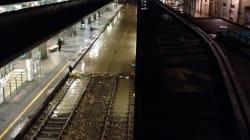 Tentano di stuprarla alla stazione Garibaldi di Milano: si salva con lo spray