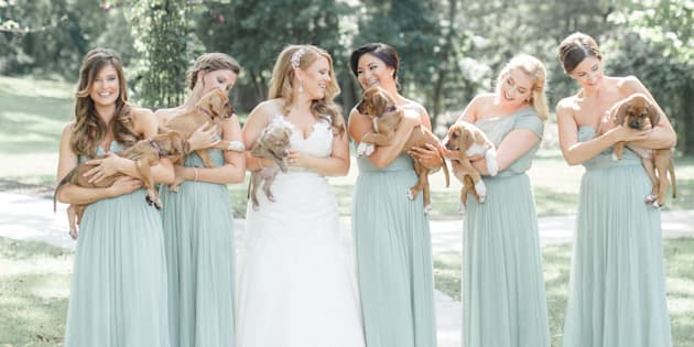 The bride has been involved with the Pitties For Peace organization since it was founded in 2011.