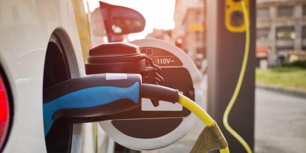Les Français sont de plus en plus branchés par les voitures électriques.