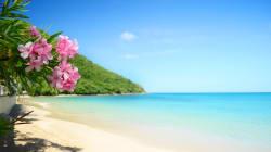 Stipendio da 110 mila euro, vacanze alle Barbados, cene stellate: questo annuncio di lavoro da tata è il più ambito del