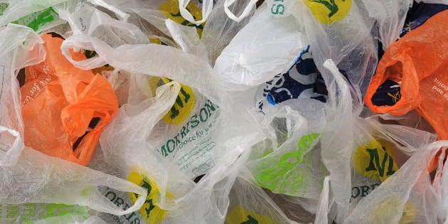 Bolsas de plástico de supermercado. Más de ocho millones de toneladas de plástico son tiradas a los océanos cada año.