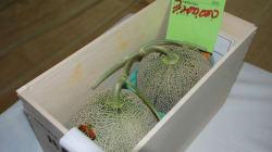 Deux melons vendus près de 38 000 $ au
