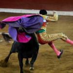 Morena lucha contra Morena para revivir las corridas de toros en