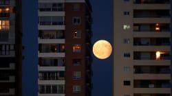 Las más bellas fotos del eclipse de luna del 7 de