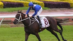 Winx's Inspirational Trainer Reveals The Secret To The Wonder Mare's Success Is 'Lots Of