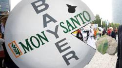 Le nom Monsanto