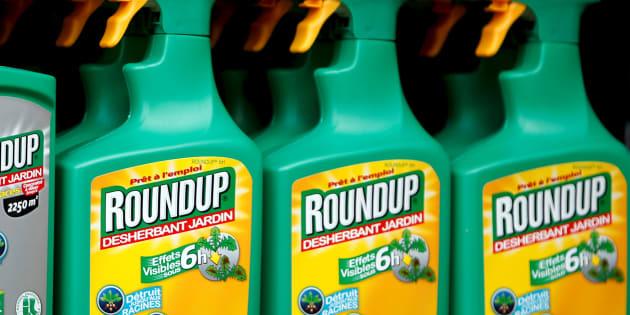 Glyphosate de Monsanto: grâce aux internautes, la Commission européenne va être obligée de statuer