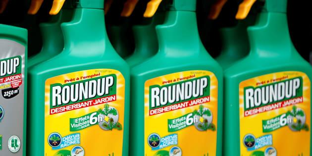 Le Parlement européen se prononce pour la disparition du glyphosate d'ici fin 2022 (Image d'illustration).