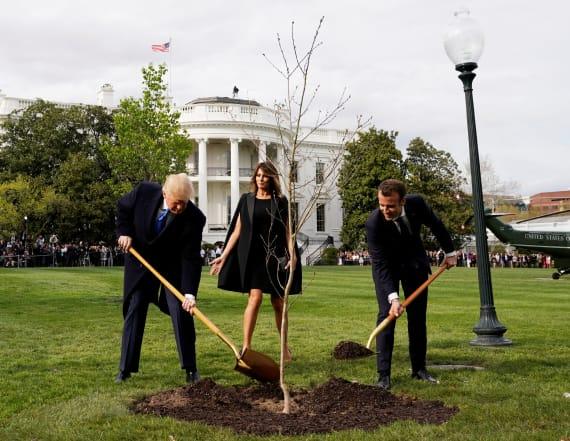 Trump gets slammed on Twitter over planting ceremony