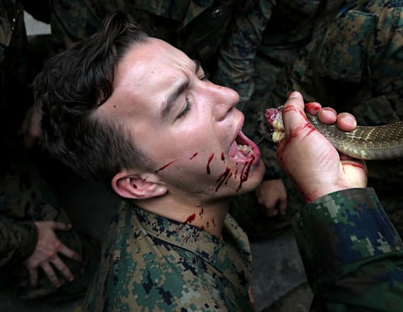 Marines drink cobra blood during survival drill